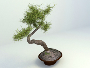 3d model bonsai free download