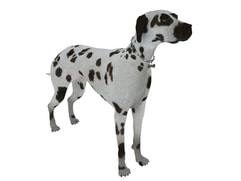 3D Model Dog animal free download