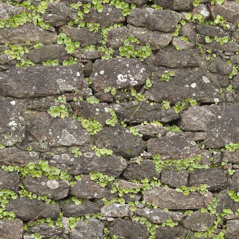stone brick textures - Outdoor stone brick wall with grass 006
